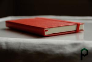 Красный красивый молескин