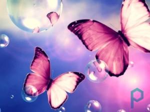 Мое розовое будущее из  розовых бабочек