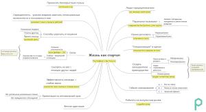 """Mindmap по книге """"Жизнь как стартап"""". Сделано в Xmind - пример"""